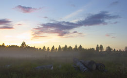 The dawn in the forest, Russia Royalty Free Stock Image