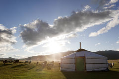 Dawn in Ger. Mongolië Stock Fotografie