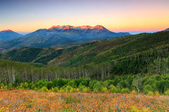 Dawn glow in the Wasatch Mountains. Stock Photo