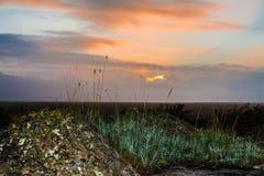 Dawn hemel Stock Afbeeldingen