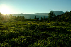 Dawn on the hilly field Royalty Free Stock Photo