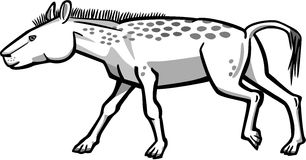 Dawn Horse. Illustration of eohippus the dawn horse, primitive ancestor of modern horses vector illustration
