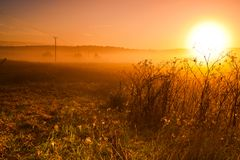 Dawn, the hot sun rises over the field, power line stock images