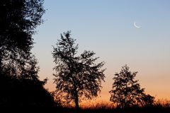 Dawn Landscape with Crescent Moon Stock Image