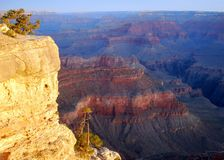 Dawn Light, Grand Canyon Royalty Free Stock Photography