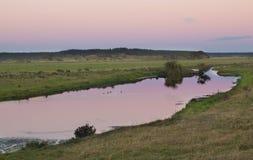 Dawn Light Pond Stock Image