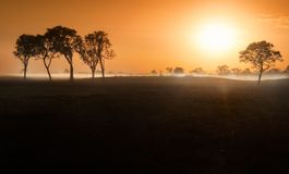 Dawn mist in the Australian Outback Darwin, Northern Territory. Dawn mist amongst trees in the Australian Outback Darwin, Northern Territory Royalty Free Stock Images