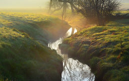 Dawn mist with country stream Royalty Free Stock Photos