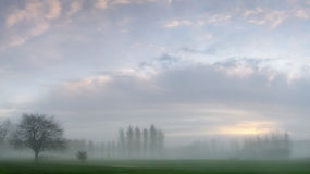 Dawn Mist On A Golf Course Royalty Free Stock Image