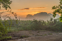 A glorious morning with golden Dawn Mist over the Surrey farm gate stock photography
