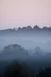 Dawn Mist portrait Stock Images