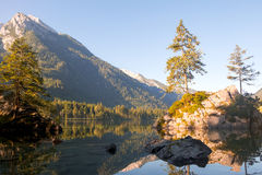 Dawn of the Mountain Forest Lake Hintersee Royalty Free Stock Images