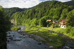 Dawn on a mountain river in summer Royalty Free Stock Photography