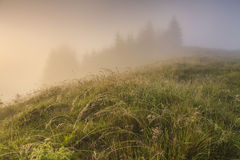 Dawn in the mountains Stock Images