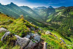 Dawn in the mountains in summer Stock Image