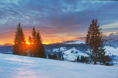 Dawn in mountains, winter Royalty Free Stock Photography