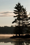 Dawn in Muskoka. Stock Images