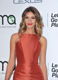 Dawn Olivieri Stock Photo
