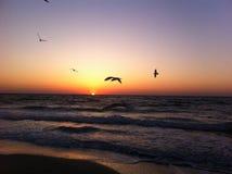 Dawn op de Zwarte Zee, Odessa, de Oekraïne, 2016 stock foto