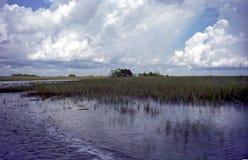 Dawn op Everglades Royalty-vrije Stock Afbeeldingen