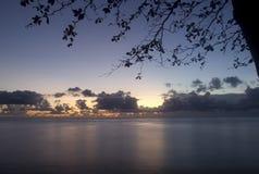 Dawn op het strand Royalty-vrije Stock Fotografie
