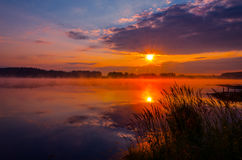Dawn over the forest lake Stock Photography