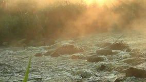 Dawn over het Meeslepen van rivier stock videobeelden