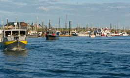 Dawn parade of boats at Homer Small Boat Harbor stock photography
