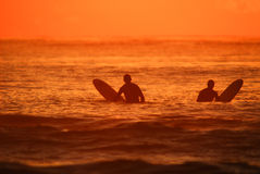 Morning surfers Royalty Free Stock Photography