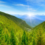 Dawn in the picturesque mountains covered with forests Royalty Free Stock Images