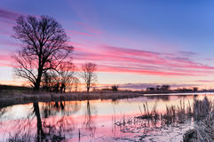 Dawn with pink clouds over a wild pond surrounded by trees in autumn morning Royalty Free Stock Images