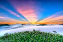 Dawn on the plateau in the morning with colorful sky,. Beneath the pine forests covered with fog shrouded the landscape so beautiful idyllic countryside Dalat Stock Photo