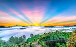 Dawn on the plateau in the morning with colorful sky,. Beneath the pine forests covered with fog shrouded the landscape so beautiful idyllic countryside Dalat Royalty Free Stock Images
