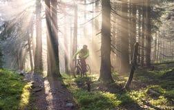 Dawn rays mountain cycling Royalty Free Stock Photos