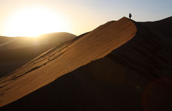 Dawn on red dune in Namibia Royalty Free Stock Photo