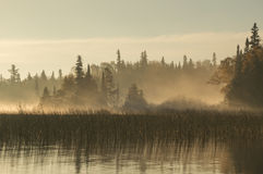Dawn on the river in Northern Ontario. Taken at dawn this image whos shafts of sunlight shining through the fog between the camera and the conifer trees along Royalty Free Stock Image