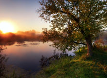 Dawn on the river Stock Photos