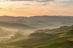 Dawn in a Rural rolling landscape Stock Photography