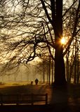 Dawn's Early Light. Man walking his dog on a cold morning Royalty Free Stock Photography
