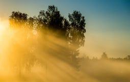 Dawn scenic landscape at sunrise Royalty Free Stock Photo