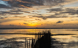 Dawn at the seaside when low tide Stock Image