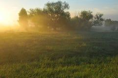 Dawn in Siberia Royalty Free Stock Image