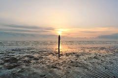 Dawn strand Stock Foto's
