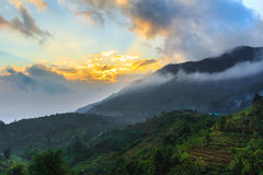 Dawn at strawberry field. Morning view of strawberry field on Doi Ang Khang, Thailand in HDR mode Royalty Free Stock Photography