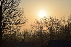 The dawn the sun the trees. An industrial city factories Royalty Free Stock Photos