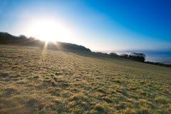 Dawn Sunburst in a Field Stock Photo