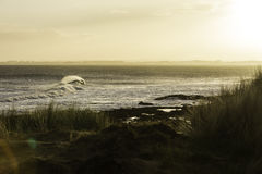 Dawn Surf image stock