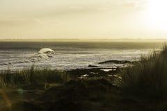 Dawn Surf Stock Image