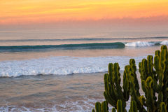Dawn surf at Taghazoute in morocco 3 Stock Photo