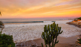 Dawn surf at Taghazoute in morocco 2 Stock Photo